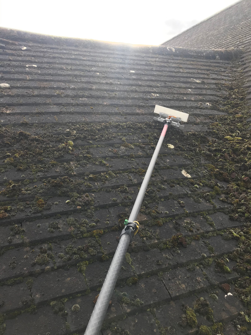 bromley roof moss removal