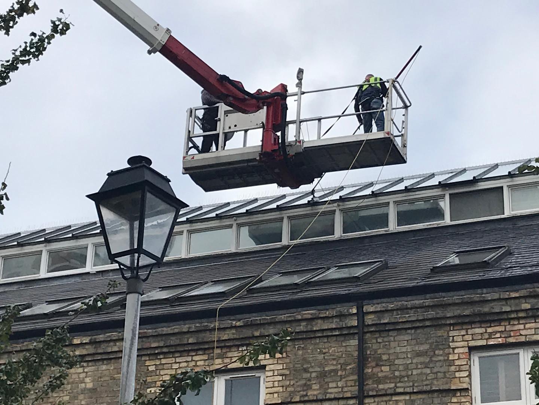 croydon window cleaner