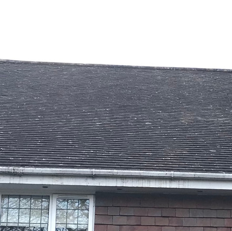 roof moss removal beckenham