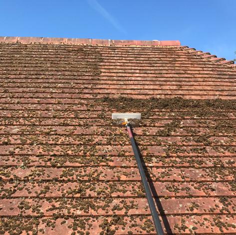 beckenham roof cleaning near me