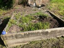Before & After Busy Mum's Garden
