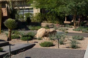 Entry Landscape