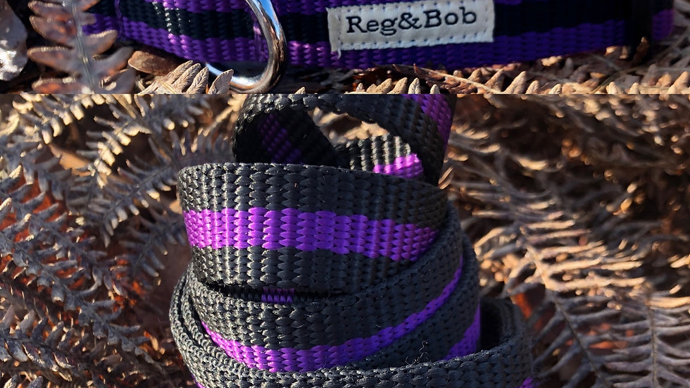 Reg & Bob Collar & Lead Set