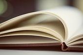 Veracity Content: blank book