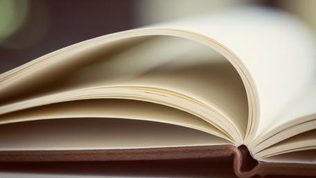 As Lições de Menezes Cordeiro - Direito e Discriminação