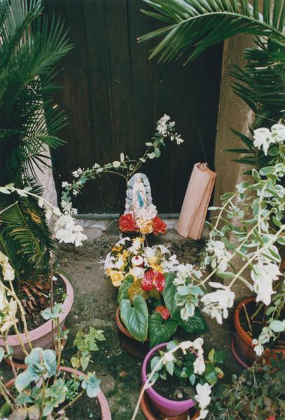 linda-schaeffler-photographie-design-59.