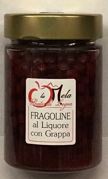 FRAGOLINE DI BOSCO in liquore con grappa
