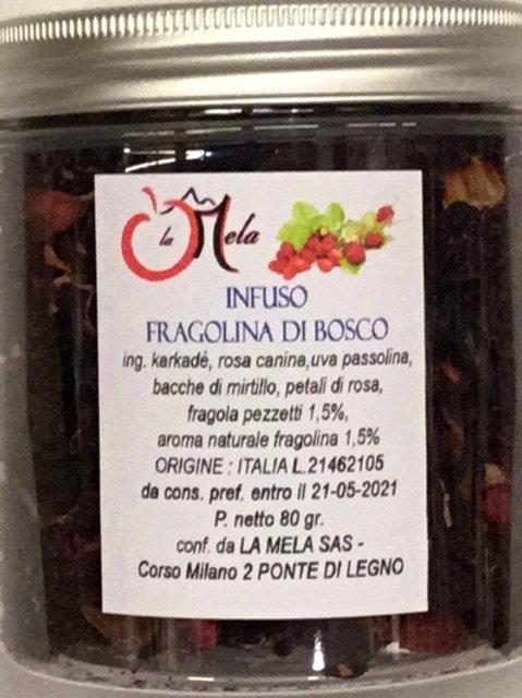 Infuso FRAGOLINA DI BOSCO EXTRA 80 Gr.