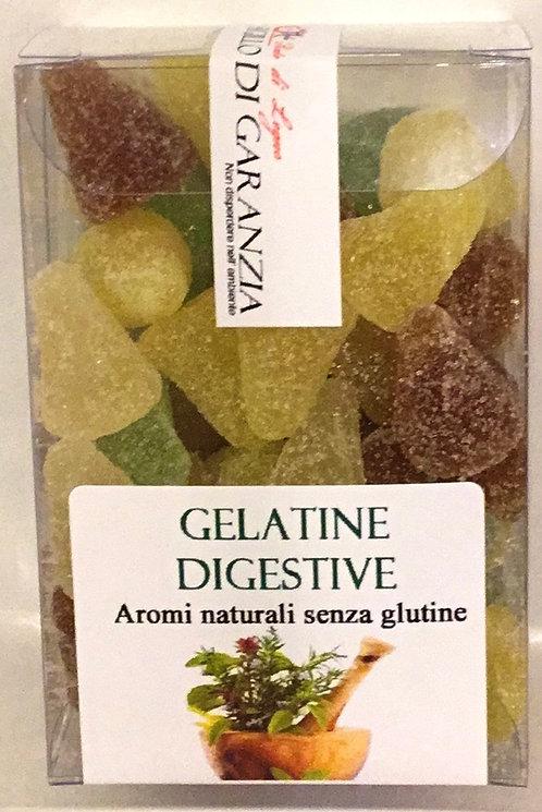 Gelatine DIGESTIVE 150 Gr.