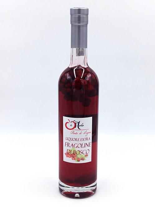 Liquore FRAGOLINE DI BOSCO 500 ml.