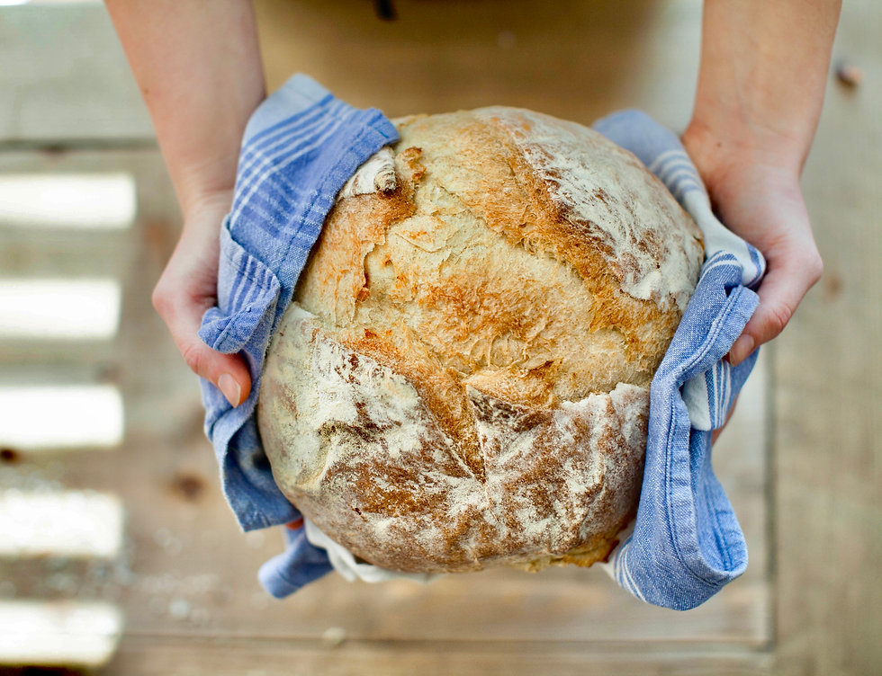 bread-food-fresh-hands-263168.jpeg