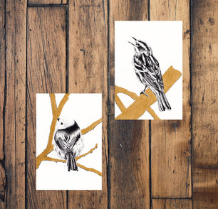 """Set of two postcards - """"Warbler & Long Tailed Tit"""""""