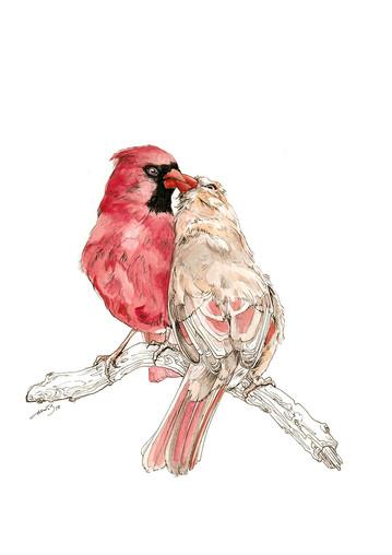"""Loving Cardinals"""
