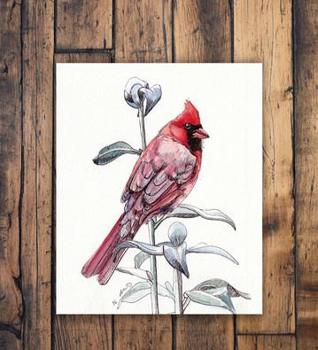 """""""Cardinal"""""""