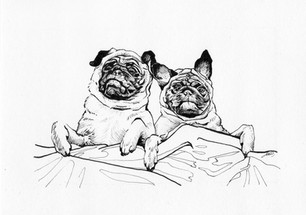 """Couple of Pugs"""