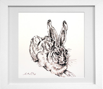 Hare with frame.jpg