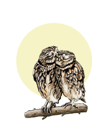 """Loving Owls"""