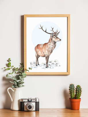 """""""Stag"""""""