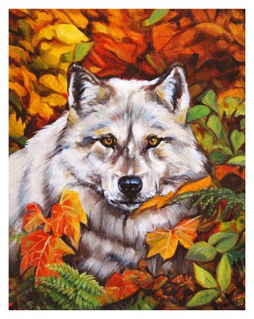 """""""Wolf in Autumn Colours"""""""