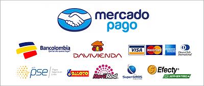 pago-seguro-opt.png
