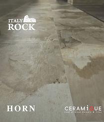 HORN_Cover-01.jpg