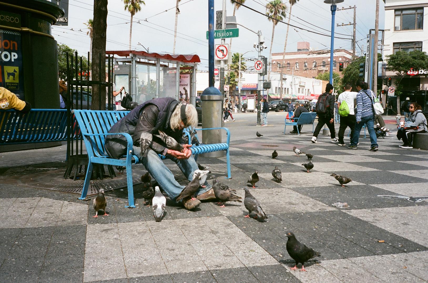 Pigeon Man - San Francisco, CA