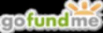 gofundme-social-media-donation-fundraisi