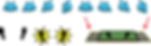 Co-opterpillar - Attract Loop Graphics_1