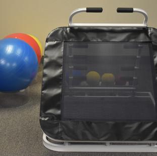 Medicine Ball Rebounder and Exercise Balls