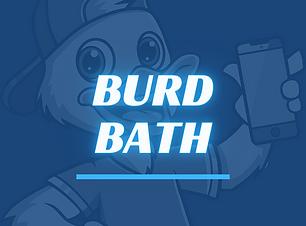 Burd Bath Mobile Detailing Rochester