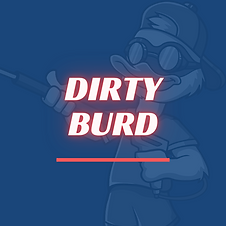 Dirty Burd Mobile Detailing Rochester