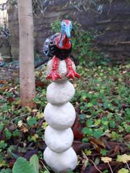 Turkey on stacking stones