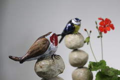 Bluetit and robin on stacking stones