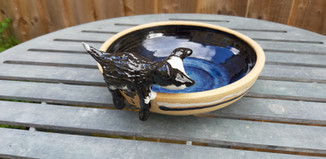 Water bowl with sheep dog