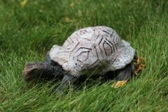 Raku tortoise