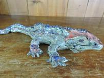 Tuatara lizard