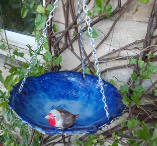 Robin birdbath