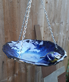 Bluetit birdbath