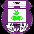 artvinhopaspor2.png