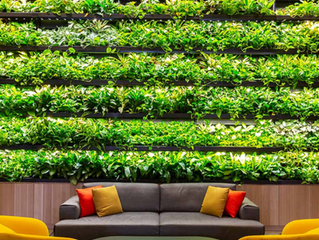 Biophilic design contributes to human well-being