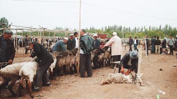 903 Livestock Market.jpeg