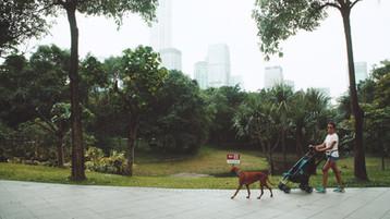302 Shenzhen.jpeg