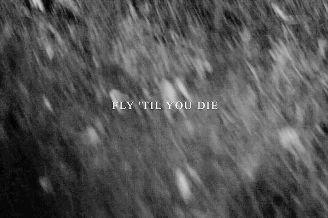 fly 'til you die