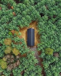 carpenter's cabin.jpeg