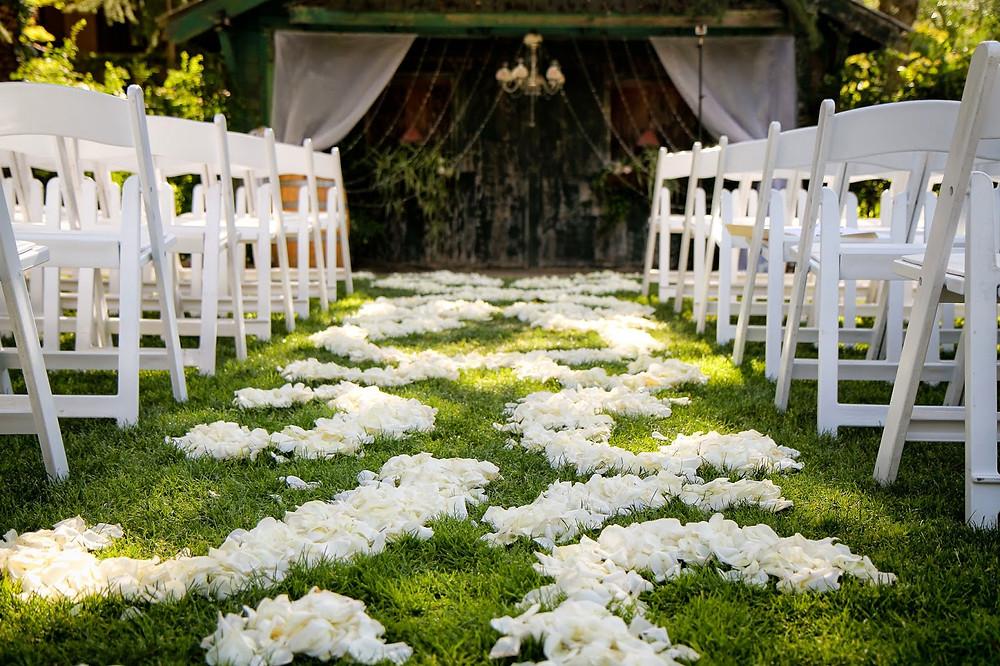 aisle petals.jpg