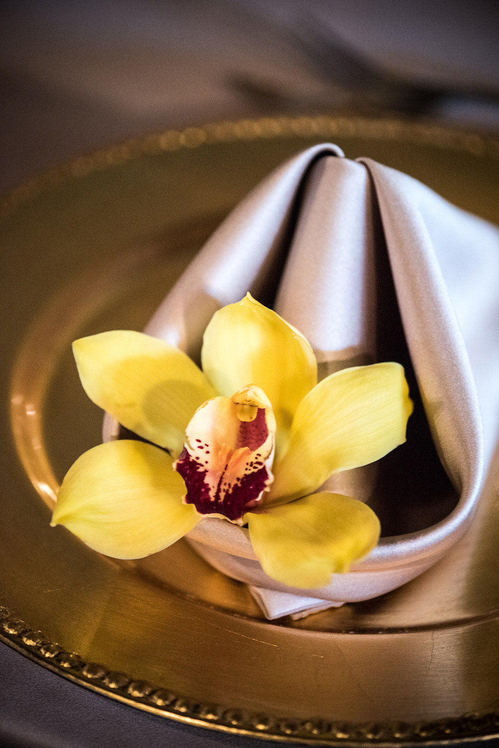 single orchid at place setting by Visual Impact Design | Photo by Allison Stahl Studio
