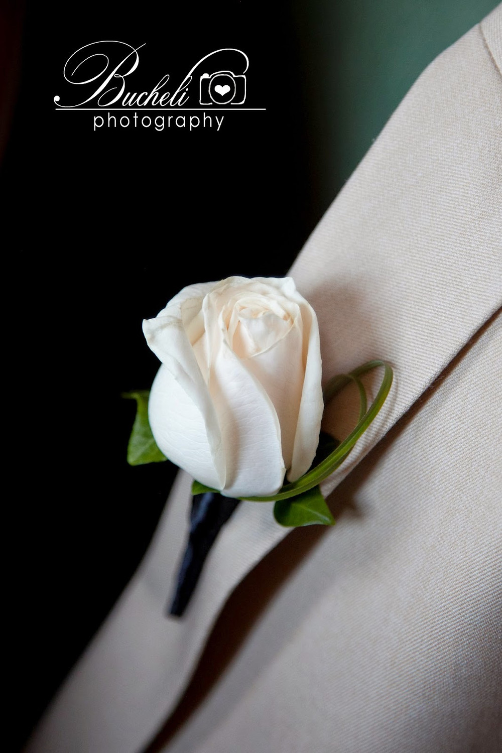 Boutonniere by Visual Impact Design. Bucheli Photography.