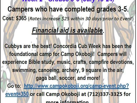 Camp Okoboji Cubs Week
