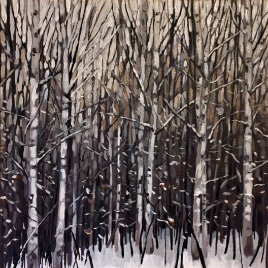 Winter birches 1