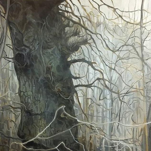 Oak in the tangled wood.